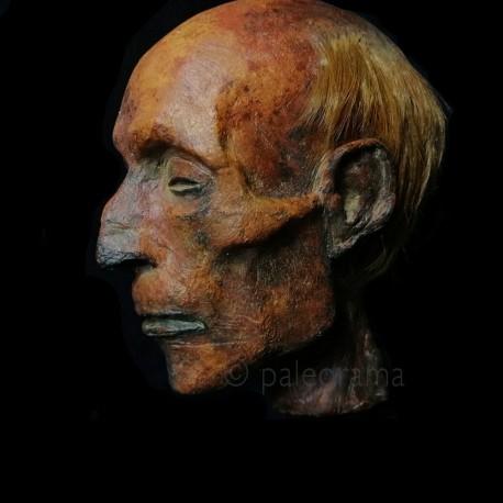 Momia de Ramsés II - PALEORAMA SL